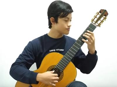 Altamira Guitars – AIVGC 2020
